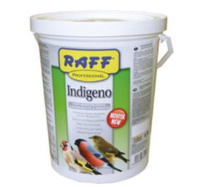 Raff indigeno kg 2