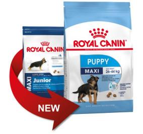 Royal canin maxi puppy kg 4
