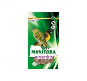 Manitoba spinus e spinus kg 2,5