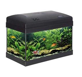 Acquario babol 40 cm