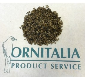 Ornitalia girasole micro kg 2,5