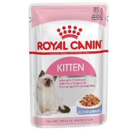 Royal canin gatto kitten jelly gr 85