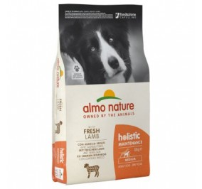 Almo nature holistic medium large agnello kg 2